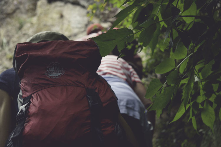 Backpack Casual Clothing Day Focus On Foreground Foliage Forest Headscarf Hiking Lifestyles Men Side View Winter Coat