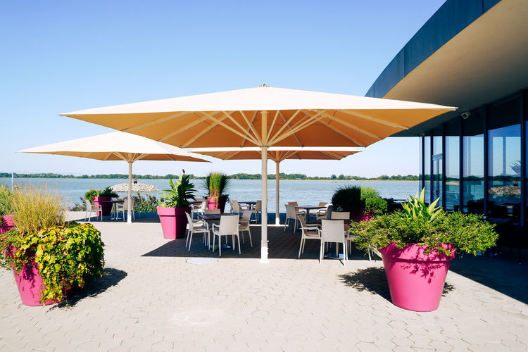 Potted plants on table at beach against clear sky