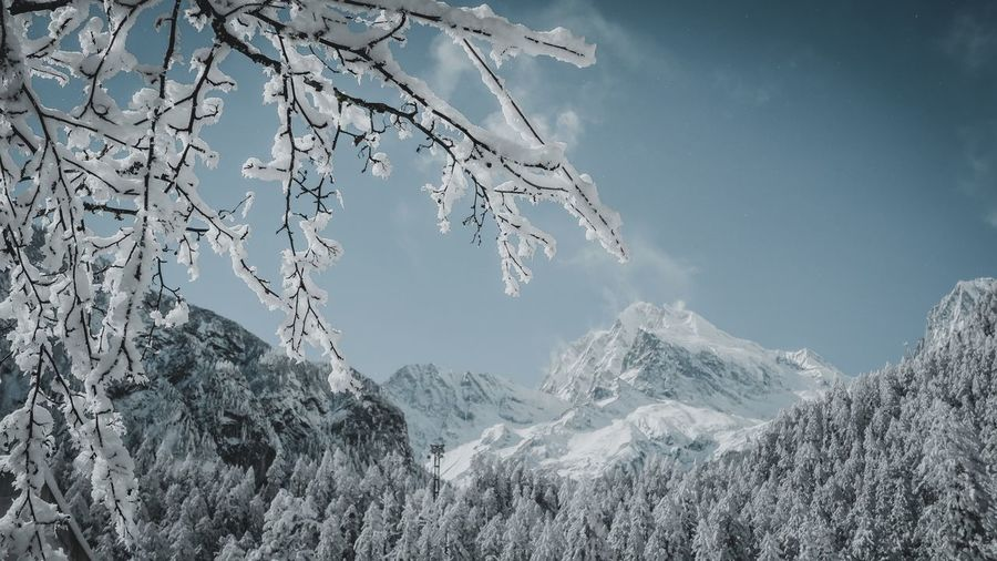 Snow Mountain Cold Temperature Winter Sky Beauty In Nature Scenics - Nature Nature Tree Landscape Tranquility Environment Mountain Peak Tranquil Scene No People Day Outdoors Plant Snowcapped Mountain Mountain Range Ice Coniferous Tree My Best Photo