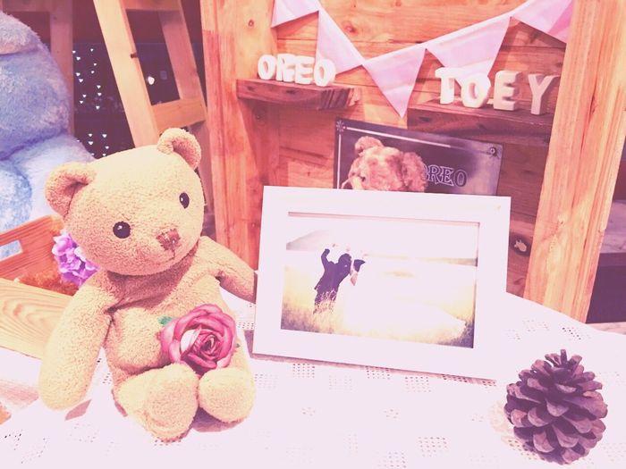 My bear...L.O.V.E....wedding ceremony Wedding Taking Photos My Bear Story Mymheegoeverwheres EyeEm Best Edits Pastel Power Wedding Photography Enjoyment Love