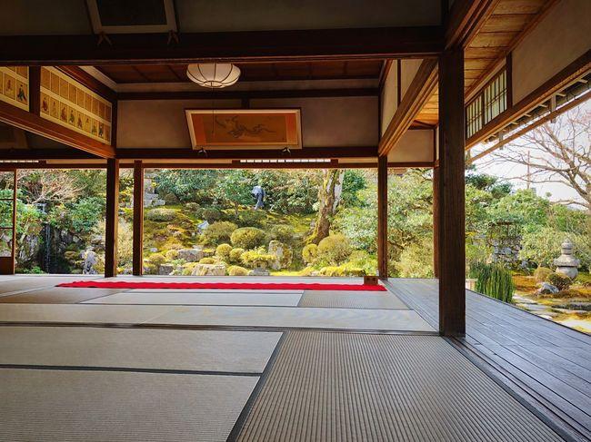 実光院 大原 Kyoto,japan Kyoto Garden Tranquil Scene Travel Destinations Tranquility Japan Photography Architecture Built Structure Indoors  No People Day Tree Window Plant Entrance Architectural Column