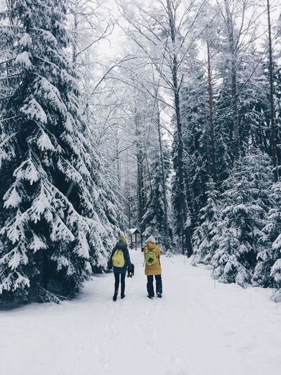 Adult Adults Only Beauty In Nature Cold Temperature Day Deep Snow Friendship Fun Leisure Activity Mountain Nature Only Men Outdoors People Ski Holiday Snow Snowing Togetherness Tree Two People Vacations Winter