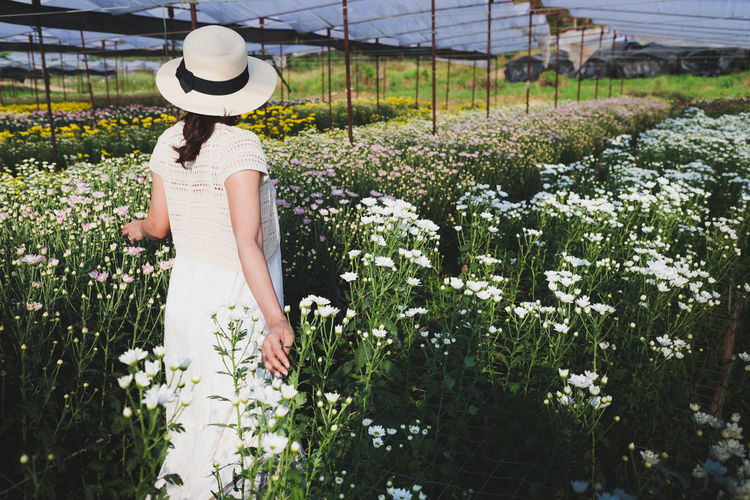 Rear view of woman standing by flowering plants on field