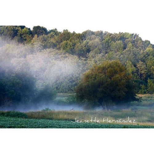 Landscape with fog Rebels_nature Rebels_united Ru_justnature Ru_scapes Rebel_pops Rebel_scapes