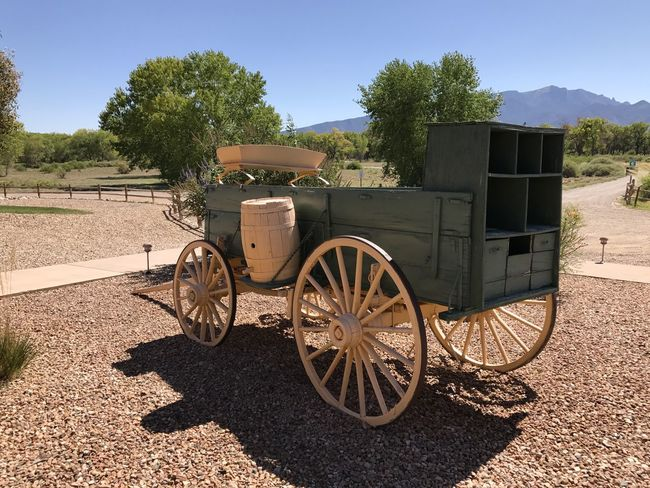 Old Wagon Wagon Wheel Agriculture Transportation Sunlight Old-fashioned Outdoors Day Tree Rural Scene No People Nature Sky