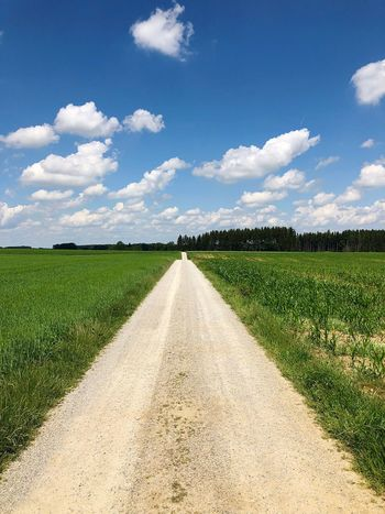 Cloud - Sky Sky Plant Nature Agriculture vanishing point Direction The Way Forward Diminishing Perspective Growth Field Environment Landscape Land No People Day Rural Scene Tranquility Green Color