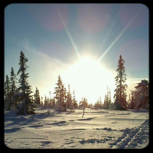 Sun Rising Beutiful Day Snowymountain GetOutThere