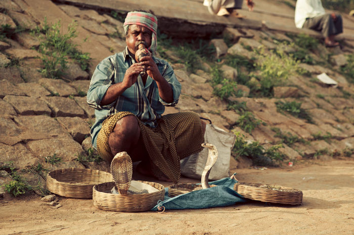 Adventure Ancient Basket Cobra Culture Heat Hot India Indian Man Outdoors Religion Snake Charmer Snakes Spirituality Street Sun Traditional Traditional Culture Travel Travel Desinations Travel Photography Traveling Tropical Tropical Climate