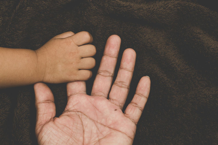 The hands of children and parents. Adult Body Part Bonding Care Finger Hand High Angle View Human Body Part Human Finger Human Hand Indoors  Lifestyles Love Men People Personal Perspective Positive Emotion Real People Togetherness Two People