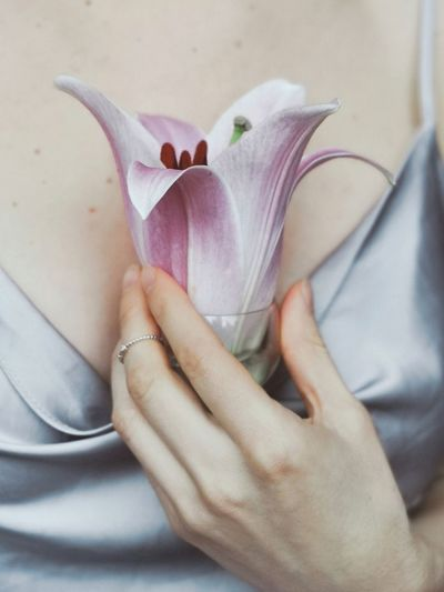Close-up of woman hand on purple flower