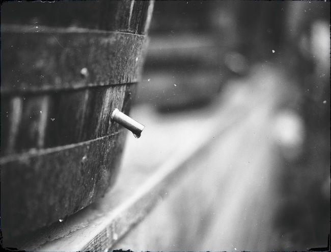 Taking Photos Sunday Söndag Rain Regn Garden Monochrome SVART & VIT Trädgården Sony A7r
