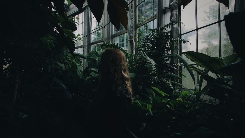 Into the jungle Blonde Dark EyeEm Selects Green Green Color Plant Plants The Week On EyeEm Blonde Girl Darkness And Light Day Greenhouse Growth Indoors  Leaf Long Hair Mood Moody One Person Plant Standing Tree Window