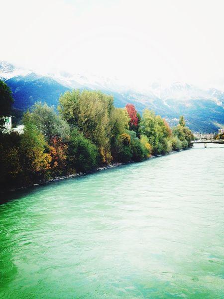 Innsbruck Hello World Nature Trees Autumn Autumn Colors Love It