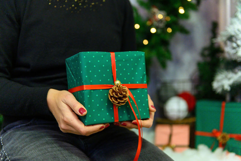 Midsection of man holding christmas tree in box