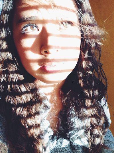 Persianas. Sunlight
