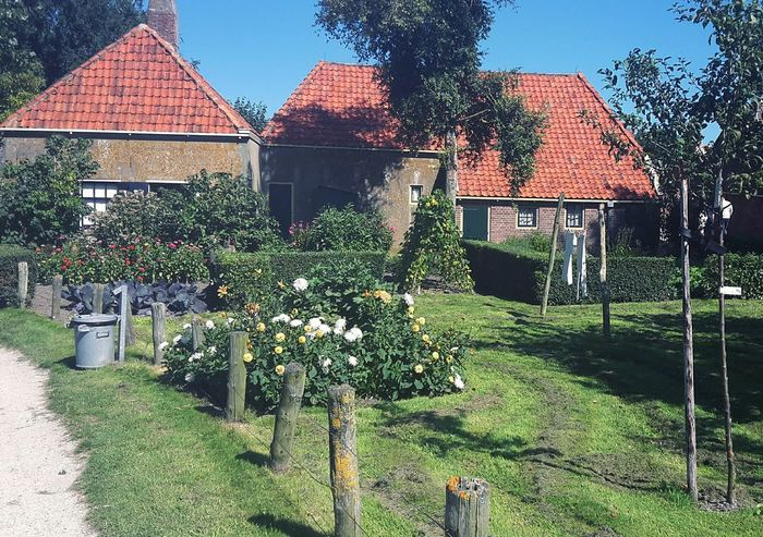 Great History Pretty Thenetherlands Netherlands ❤ Netherlands Holland Cottage Cute Houses House Flower Collection Flowerporn Flower Flowers Window Green Grass Landscape Landscape_Collection Eyemphoto