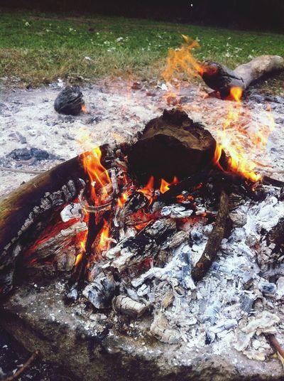 Fire Gdynia Bonfire BBQ