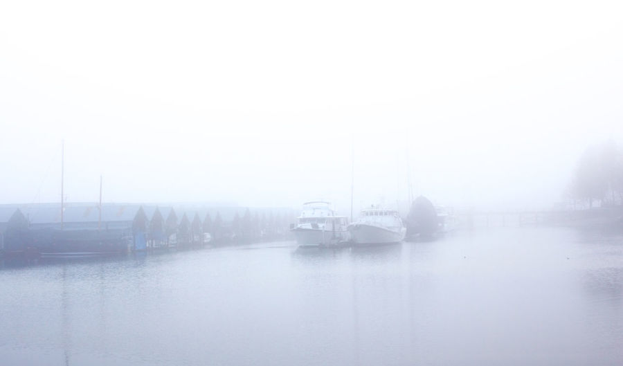 Transportation Mode Of Transportation Water Fog Day No People Travel Nautical Vessel Outdoors Harbour