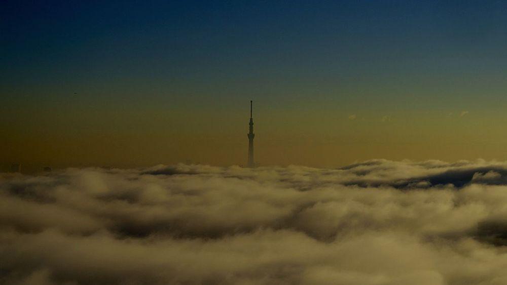 cloud Clouds Clouds And Sky Cloud Sea (雲海) Skytree Tower