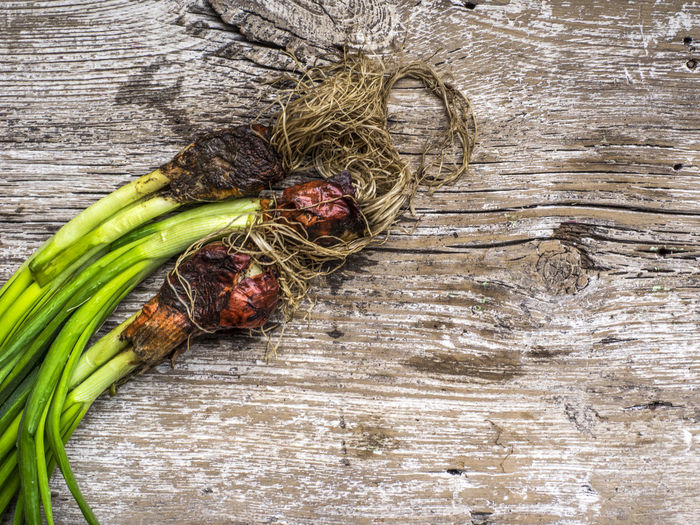 fresh organick green onion on old wooden weathering background Background Berry Food Food And Drink Fresh Freshness Fruit Green Color Healthy Eating Old Onion Organik Red Weathering Wood - Material Wooden Young