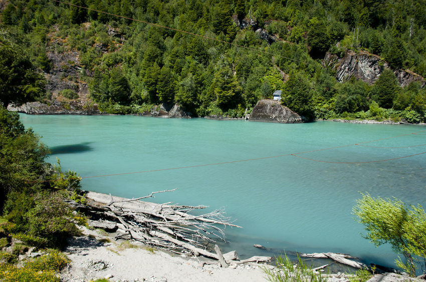 Palena River - Corcovado National Park - Chile Chile Palena Palena River Corcovado National Park Forest Patagonia Turquoise Water