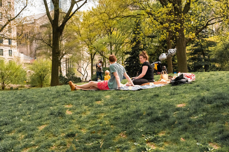 People sitting on grass against trees