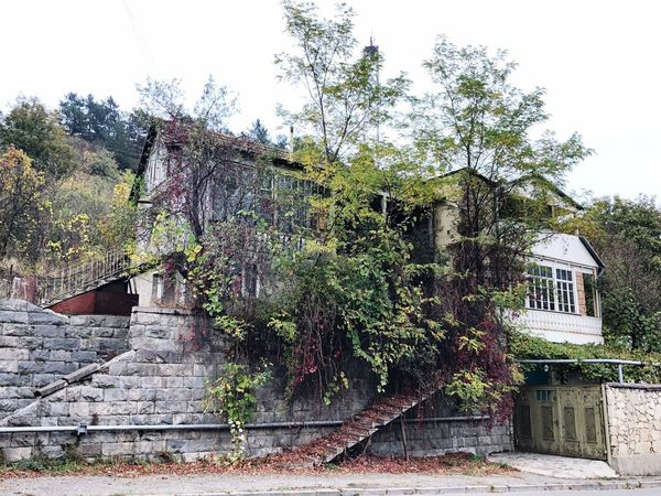 Abandoned house in Dilijan, Armenia Abandoned Buildings Dilijan Travel Destinations Travel EyeEmNewHere Armenia Built Structure Architecture Plant Tree Building Exterior Building Sky
