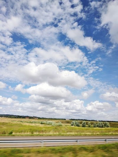 провинциальная Франция парижскиеистории прованс небо Parallel Rural Scene Sky Landscape Cloud - Sky Animal Themes