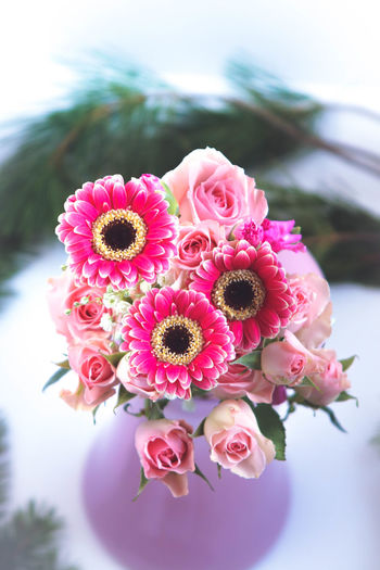 Pretty bouquet of pink roses and daisies Flower Flowering Plant Pink Color Plant Fragility Vulnerability  Freshness Beauty In Nature Close-up Flower Head Petal Inflorescence Focus On Foreground Nature Growth No People Day Outdoors High Angle View Pollen Flower Arrangement Bunch Of Flowers Bouquet Rose - Flower Daisies