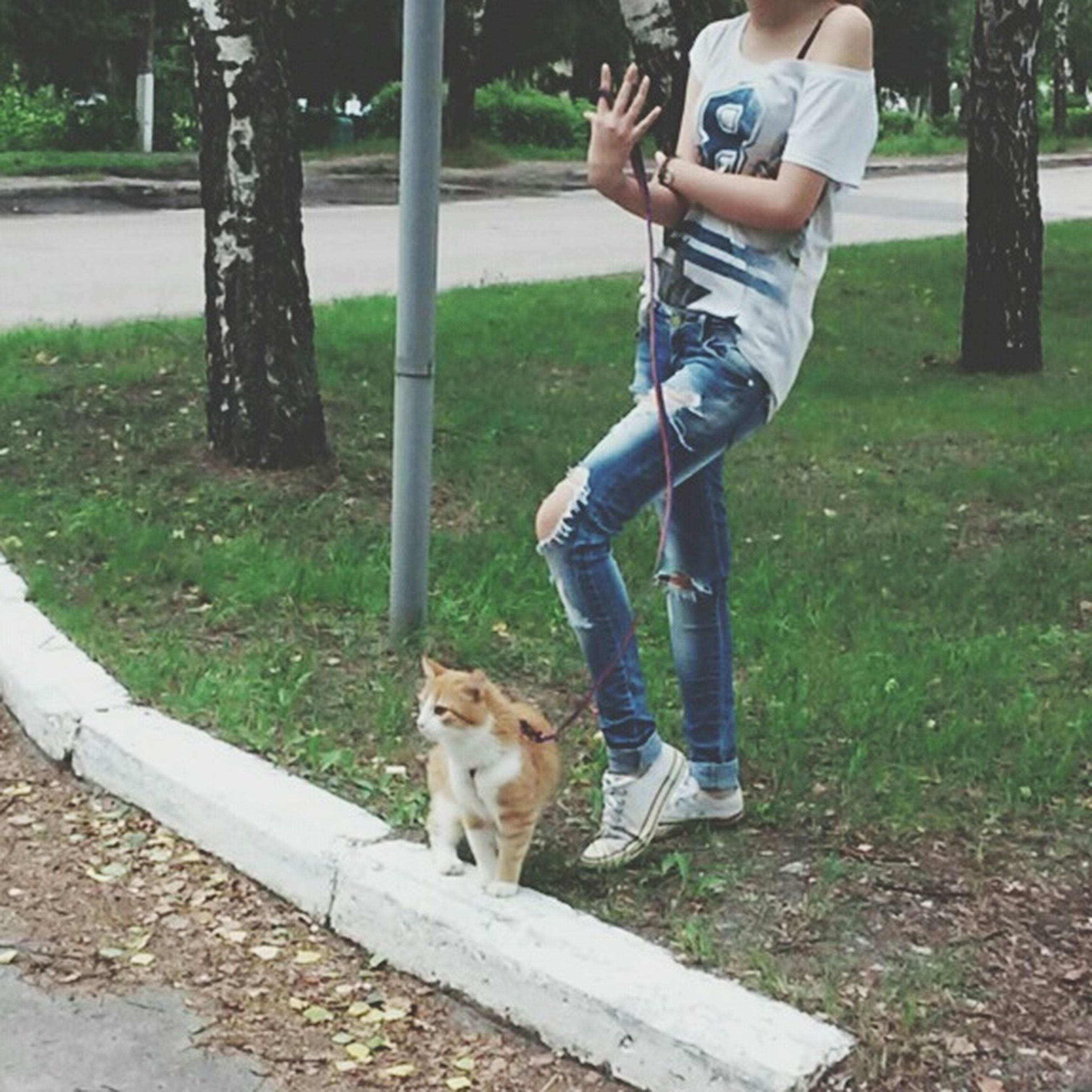 pets, dog, domestic animals, mammal, animal themes, one animal, lifestyles, leisure activity, full length, pet owner, pet leash, tree, park - man made space, casual clothing, grass, standing, canine, playing