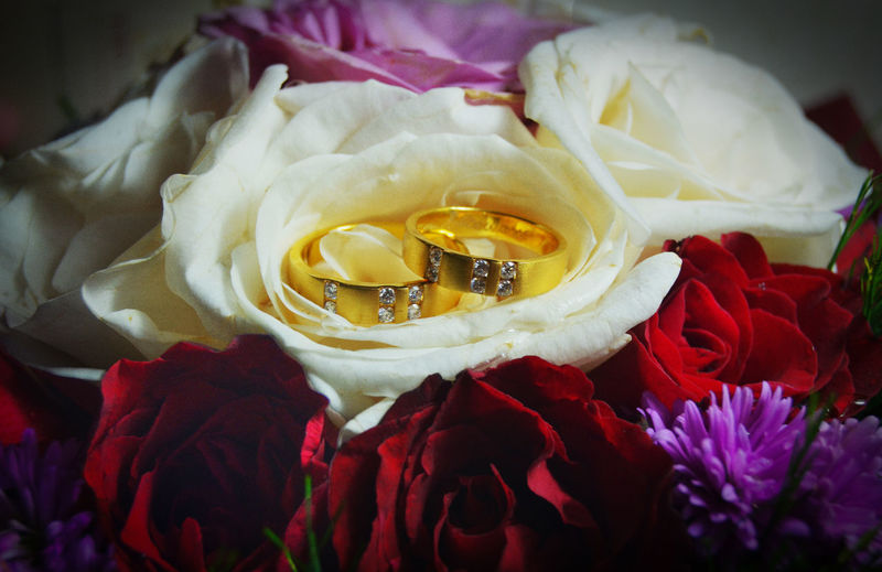 wedding rings Wedding Katholic Jesus Love Happiness Flower Head Flower Rose - Flower Petal Close-up Ring Engagement Ring Platinum Diamond - Gemstone Jewelry Jewelry Store Gemstone  Precious Gem Bling Bling Wedding Vows Engagement Jewelry Box Finger Ring Diamond Ring Wedding Ring Cosmos Flower In Bloom Bouquet Blooming Rose Petals Peony
