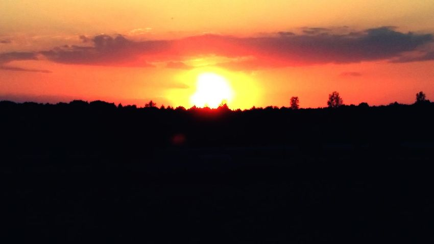 Sunset Tree Sunset Silhouette Multi Colored Dramatic Sky Sky Landscape