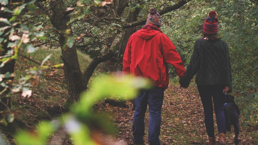 Rear View Of Couple Holding Hands While Standing In Forest