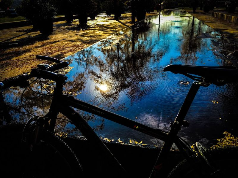 High Angle View Reflection Specialized S-Works HT S-Works Potsdam Germany Herbst Fall Beauty In Nature