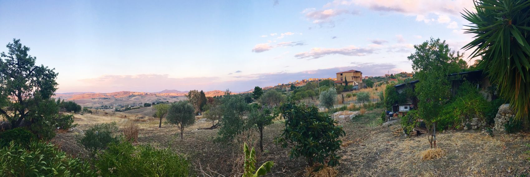 Agrigento August Showcase Rustic Sicily IPhone Photography Home Is Where The Art Is Same But Different End Of The Day Montaperto Agrigento Sicily Montaperto Agrigento Our World Home Is Where The Art Is. Summer EyeEm Nature Lover Panorama Hidden Gems  Travel
