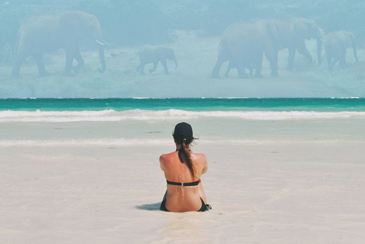 Double Exposure Of Woman At Beach And Elephant Family On Field