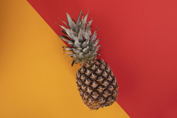 Directly above shot of pineapple over colored background
