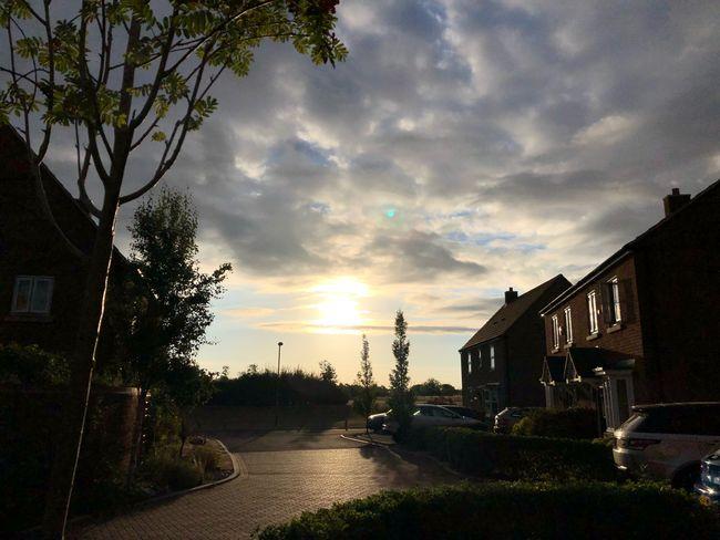 Morning #MobileSky #sunrise #sky #clouds #iphonex #shotoniphone Architecture Built Structure Building Exterior Sky Plant City Transportation Cloud - Sky Tree Nature Sunlight
