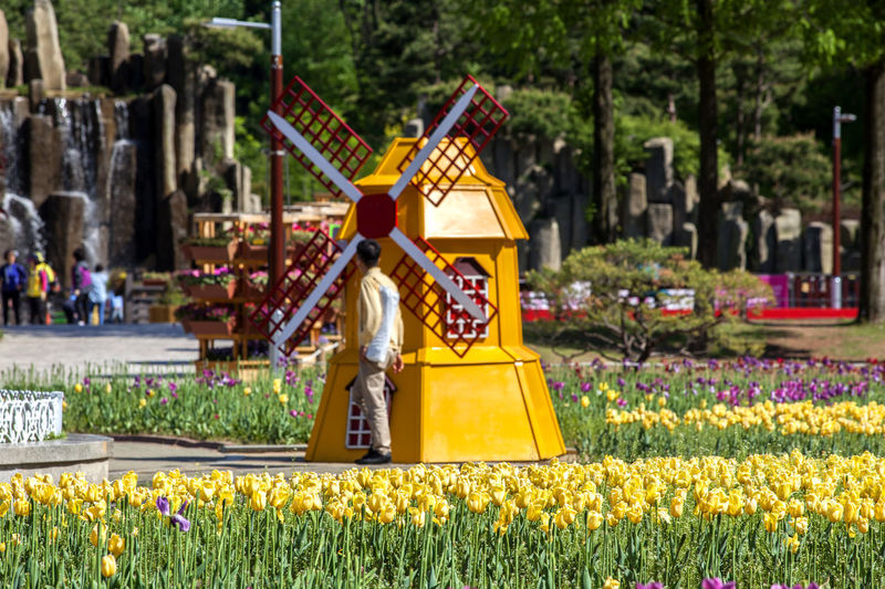 Man standing by traditional windmill sculpture in park
