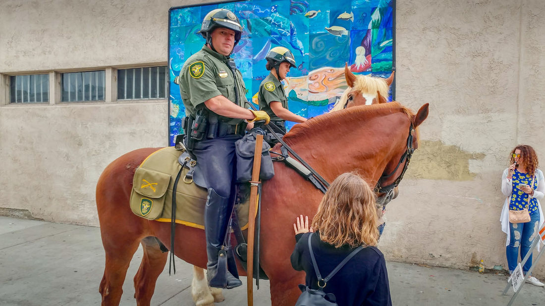 Ocean Beach Street Fair & Chili Cook-Off Activity Animal Wildlife Architecture Built Structure Casual Clothing Day Domestic Domestic Animals Herbivorous Horse Horseback Riding Livestock Mammal Men One Animal Outdoors Pets Real People Riding Vertebrate Working Animal