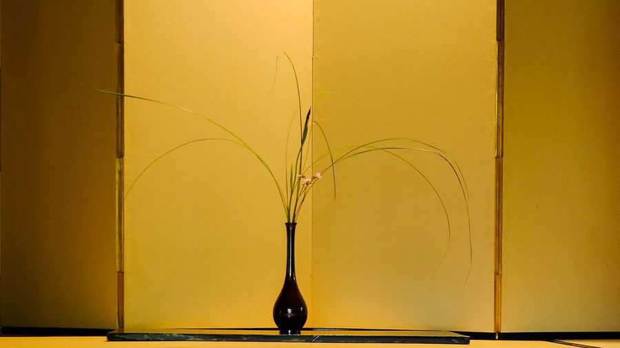 Close-up of vase in front of screen partition