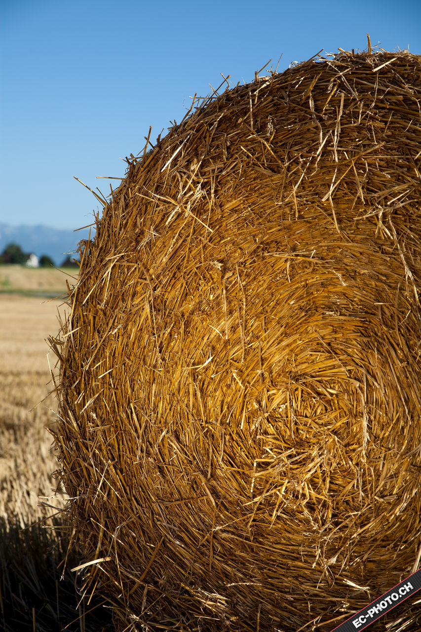 hay, bale, straw, day, hay bale, haystack, outdoors, clear sky, field, agriculture, no people, sky, rural scene, landscape, nature, close-up