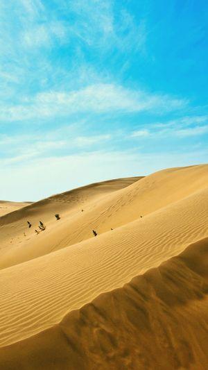 #desert #nature #sand