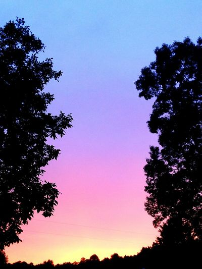Sunset in USA Sunset Casting Rainbow Colors Tree Sunset Silhouette Pixelated Sky Treetop Space And Astronomy Astronomy Spiral Galaxy Infinity