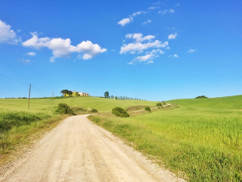 Val D'orcia Toscana Tuscany Italia Italy Landscape Grass Field Green Color The Way Forward Nature Sky Tranquility Scenics Tranquil Scene Rural Scene Day Beauty In Nature Road Travel Destinations Travel Outdoors Dirt Track Tree