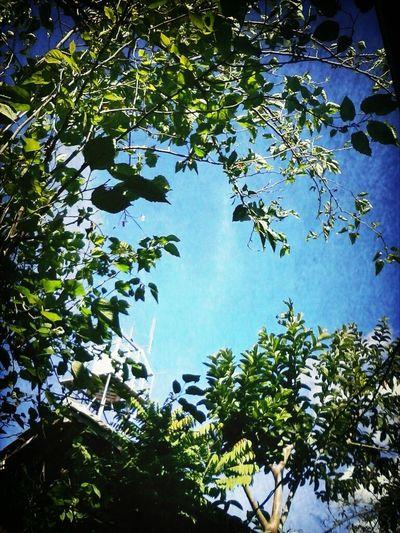 blue sky :) Sky Blue Sky Morning INDONESIA