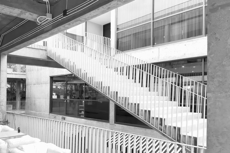 Architecture Black And White Building Building Exterior Built Structure City Day Glass - Material Modern Nature No People Office Office Building Exterior Outdoors Pattern Railing Staircase Steps And Staircases Sunlight Window