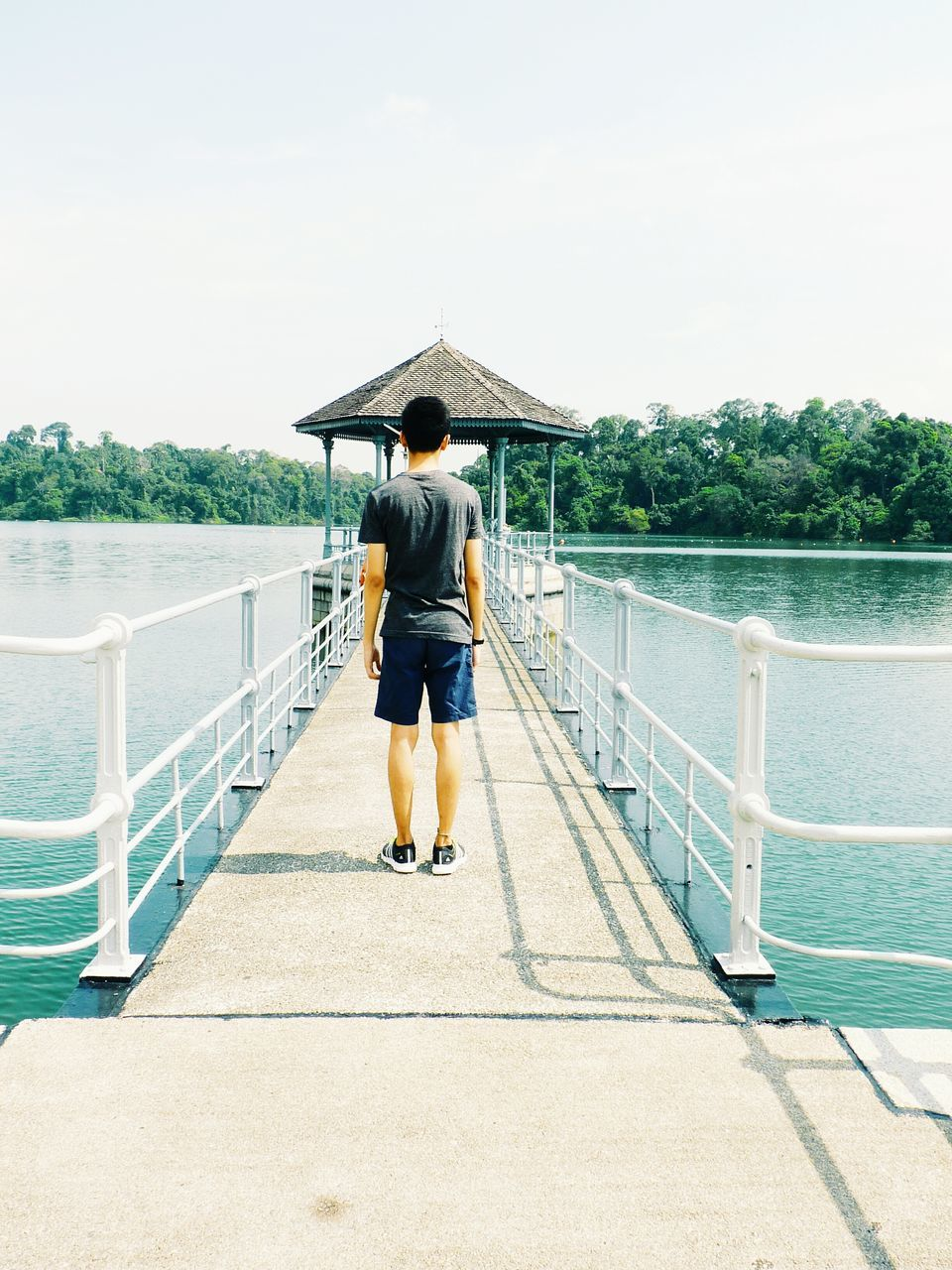 Full Length Rear View Of Boy Standing On Pier Over Lake