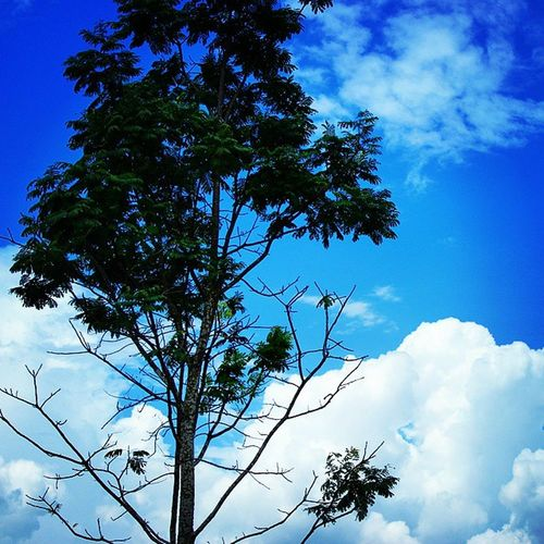 God. This is your sky... So awesome... At borneo island Ins Skylight Photography Borneo Nangabulik Mystory Mylife