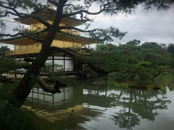 My Year My View Golden Pavilion  Kyoto, Japan